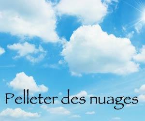 Pelleter-des-nuages---apprendre-le-québécois