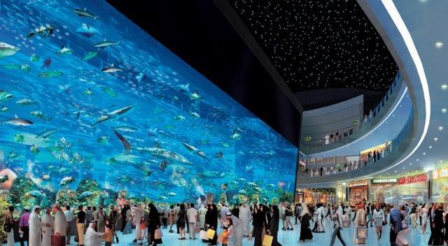 Acquario di Dubai e Zoo Sottomarino