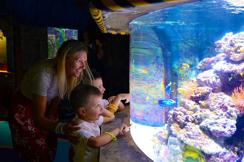 Hawaiian Nights, il nuovo evento a Lido di Jesolo SEA LIFE Aquarium