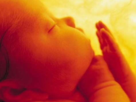 bebe_vientre_materno