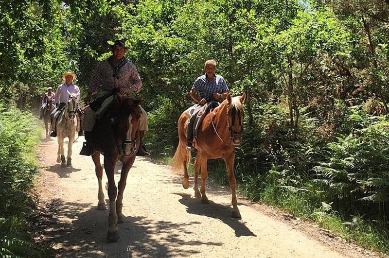 camino-de-santiago-a-caballo-2