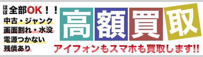 kaitooribana