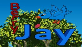 Fly Jay back and forth collecting berries in Berry Jay: Video Review