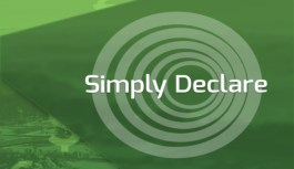 Simply Declare Travel App: Evolution of an App
