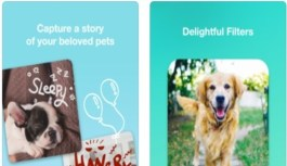 App Review – Pet Canvas