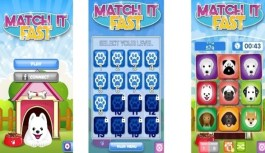 Game Review – Match It Fast