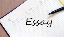 Essayjomo.com: An Essay Service Review 24/7 Support