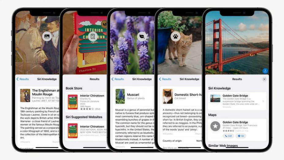 Visual Lookup in Live Text iOS 15
