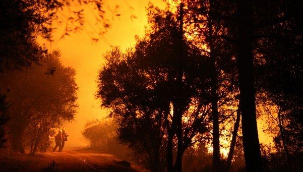 La Generalitat recha la ayuda de la UME en el incendio de Vilopriu