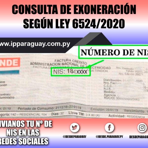 Ande Facturas Paraguay por número de NIS Ley 6524_2020