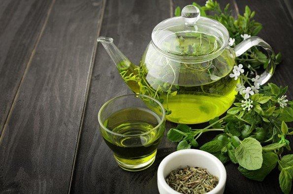extracto de te verde