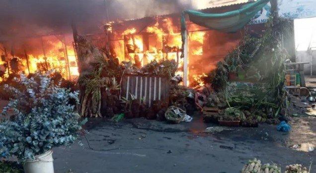 Incendio en el Paseo de los yuyos del Mercado 4
