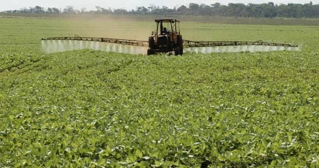 ONU acusa a Paraguay por violar derechos de los guaraníes