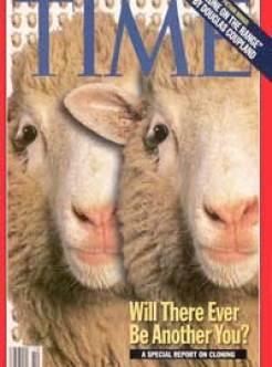 sheep cloning, human cloning