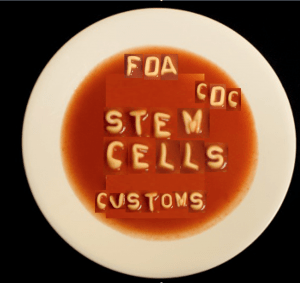 stem cell alphabet soup