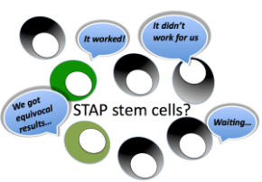 STAP crowdsourcing project