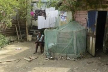 Muchas mujeres mantienen en sus patios traseros huertas y árboles frutales para el autoconsumo familiar, como esta del asentamiento rural de Mata Mamón, que se vieron afectados por la sequía en República Dominicana durante 2015.