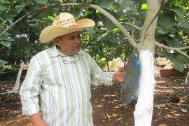 cuba agroecología finca cooperativa