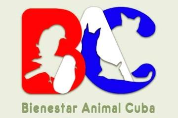 red bienestar animal cuba