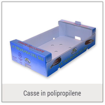 Casse in polipropilene