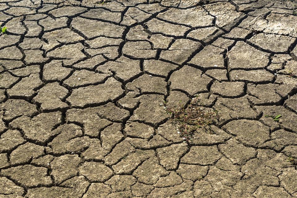 Las consecuencias de la sequía en el precio de la energía