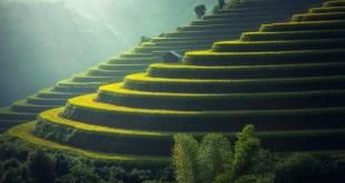 Viaja a Bali