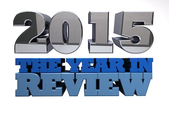 2015-year-review-335