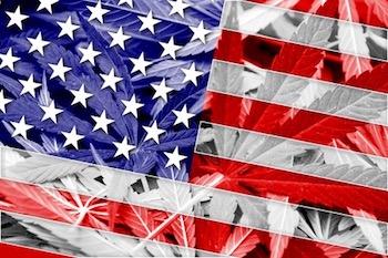 USA Flag on cannabis background.