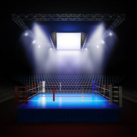 trade secrets fight - https://depositphotos.com/47368773/stock-photo-empty-professional-boxing-ring.html