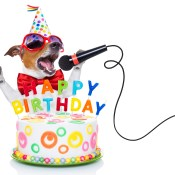 https://depositphotos.com/72790263/stock-photo-happy-birthday-dog.html