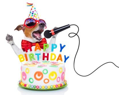 https://depositphotos.com/72790263/stock-photo-happy-birthday-dog.html