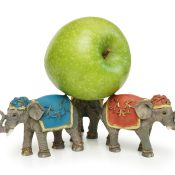 https://depositphotos.com/4427649/stock-photo-elephants-holding-green-apple-isolated.html