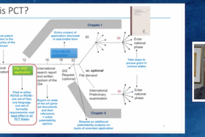 SEP2020 – Rapid Examination Using PCT – Controlling Your Prosecution Timeline – Nov 10, 2020