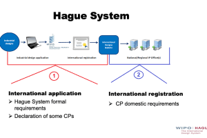 PCT Learning Center – Hague System Best Practices & Common Mistakes – Jun 24, 2021