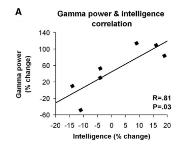 gamma and IQ