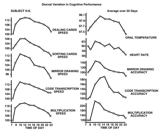 circadian rhythm cognition