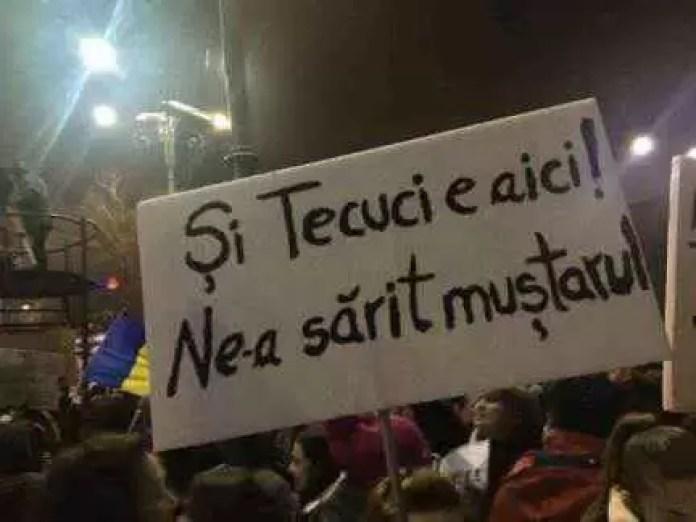 TOP-ul celor mai amuzante pancarte de la protest