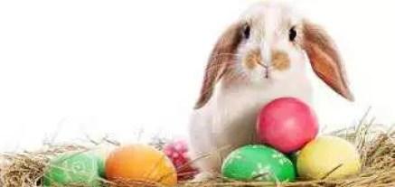 Cele mai așteptate târguri de Paște din București