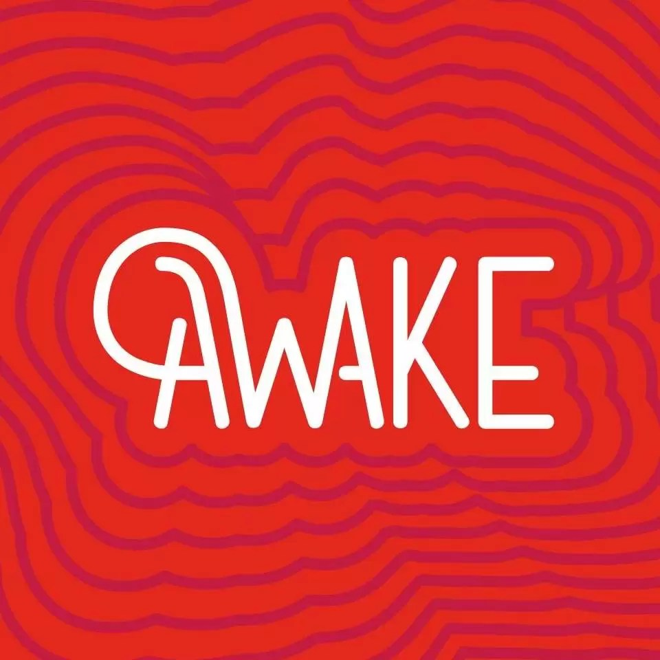 afiș Awake3