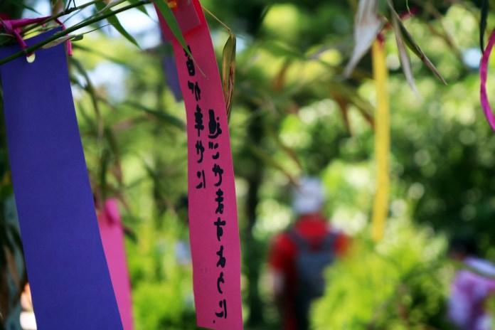 afiș Tanabata Matsuri