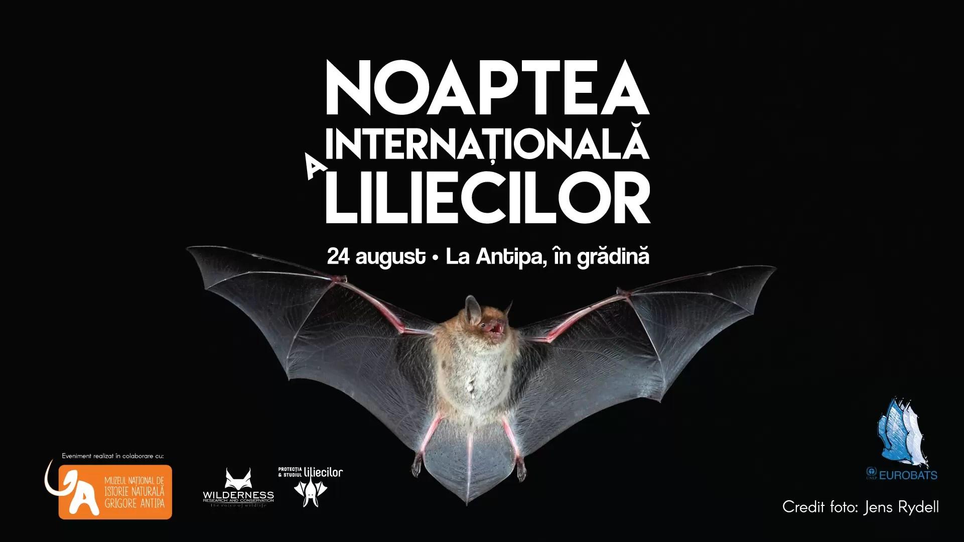 Noaptea Internaţională a Liliecilor-afis
