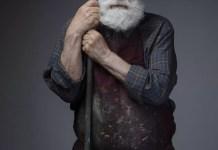 Ștefan Câlția -Bradul Copilăriei afiș