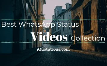 Best WhatsApp Status Video Collection - WhatsApp Status Videos