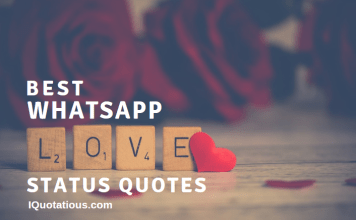 Love Quotes Archives I Quotatious