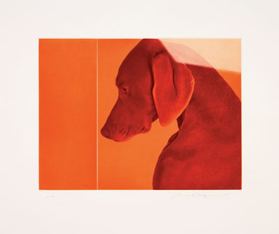 "William of Orange, 2009 5-color photogravure with soft-ground, aquatint and drypoint 18 1/2"" x 22"" Edition: 50"