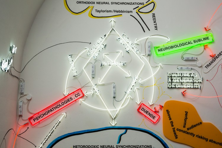 Warren-Neidich_Duende Diagram