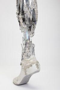 Crystalized leg photographed by Omkaar Kotedia