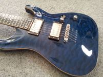 Safely Buy Guitars Online - 2009 ESP Horizon HRZ-BGSTAQ Brett Garsed Signature - I Really Like Guitars