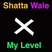 Download Music Shatta Wale – My level (Prod. by PAQ)