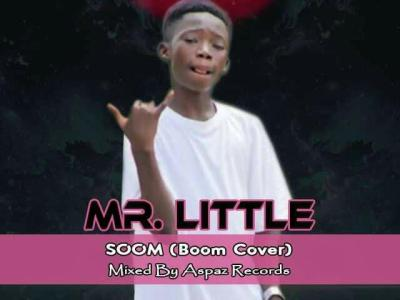 Download Music: Mr. Little - Soom (Prod Payaz Recordz)